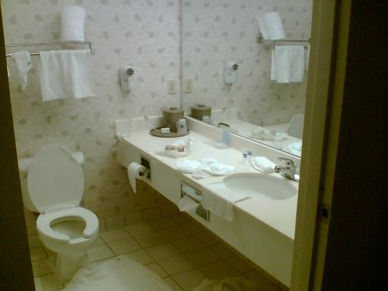 Hampton Inn Sacramento/Rancho Cordova: Bathroom1