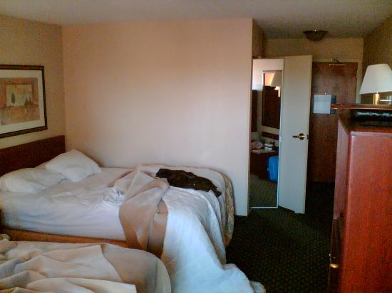Hampton Inn Sacramento/Rancho Cordova: Room