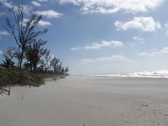 Captiva Island, FL: January 14, 2006