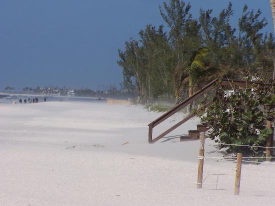 جزيرة كابتفيا, فلوريدا: January 14, 2006