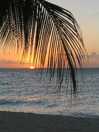 Bucuti & Tara Beach Resort Aruba: Sunset from Bucuti Beach