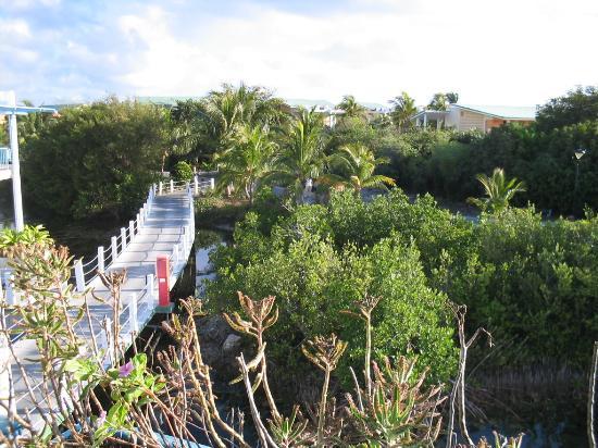Melia Cayo Coco: View of Lagoon