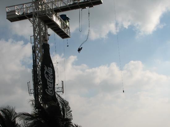 Romano Palace Hotel & Suites Acapulco: one of many bungy jumpers