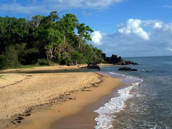 Great Barrier Reef, Australien: Palm Cove
