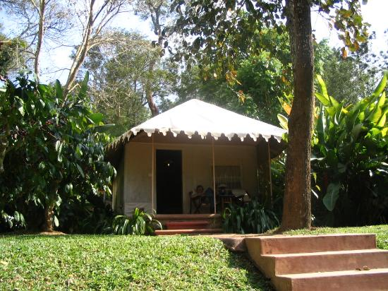 Evolve Back, Coorg : All tents have a view of the lake.  Tets are better than many hotel rooms we've been in!