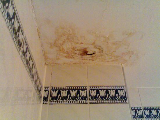 Shower Leaking Through The Ceiling Problems Hbm Blog