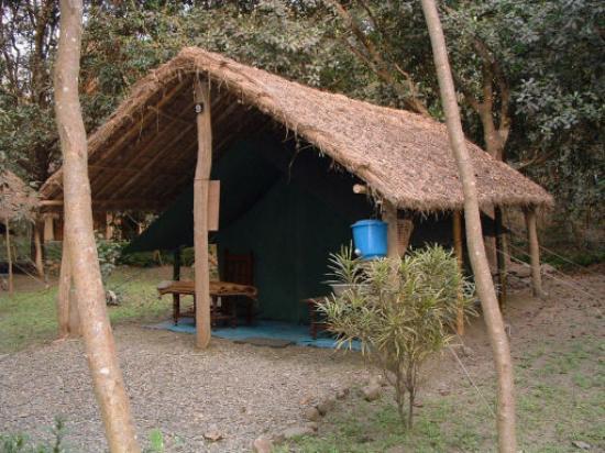 Восточный регион, Непал: Tent