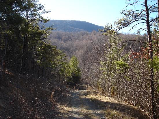 Walking Trail from House Mountain Inn