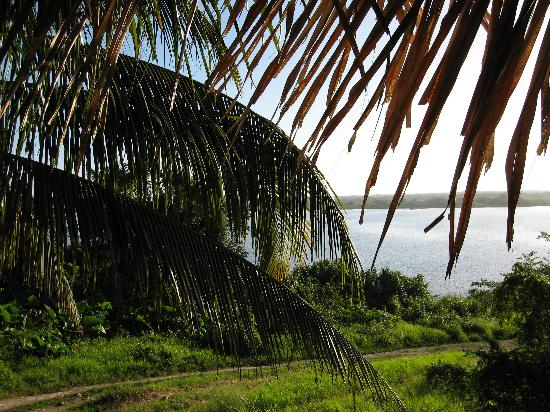 Orange Walk, Belize: View from dining room at Lamanai Outpost Lodge