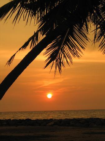 AVANI Kalutara Resort: sunset from the hotel