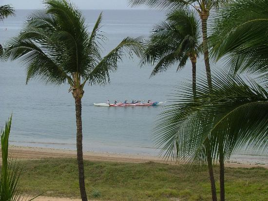 Koa Lagoon: Palm trees and view