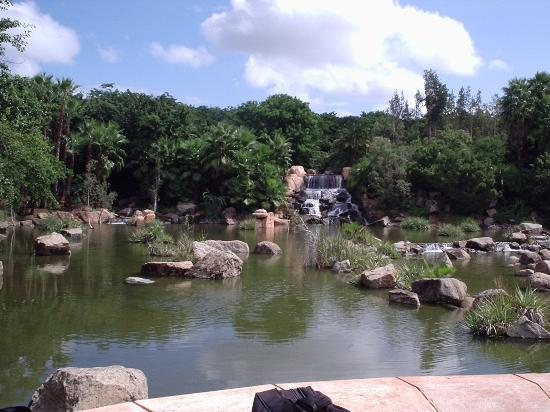 The Palace of the Lost City: waterfall & lagoon in front of hotel