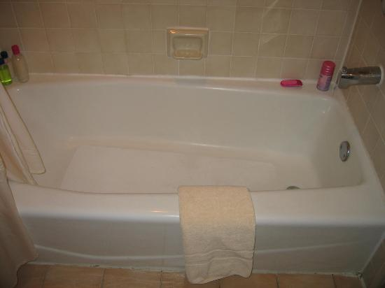 Carousel Inn and Suites: Bathtub - molding/caulking needs to be redone - yes that is mold on the floor