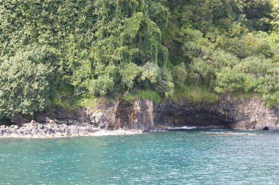 Four Seasons: View Area -  Stop on Road to Hana