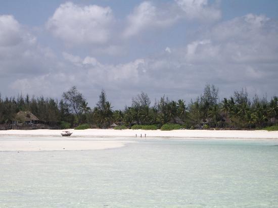 Pongwe Beach Hotel: Our own beach!