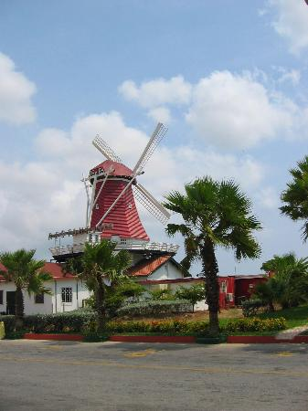 The Mill Resort & Suites Aruba: the windmill by the mills