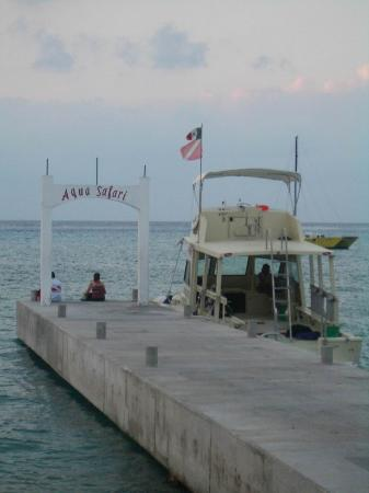 Vista del Mar Boutique Hotel : Aqua Safari dive dock & 1 of their boats