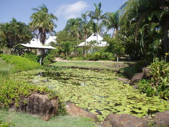 Kelly's Beach Resort: The pond in the hotel garden