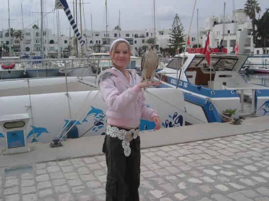 IBEROSTAR Diar El Andalous: me holding a falcon at Port El Kantatoui