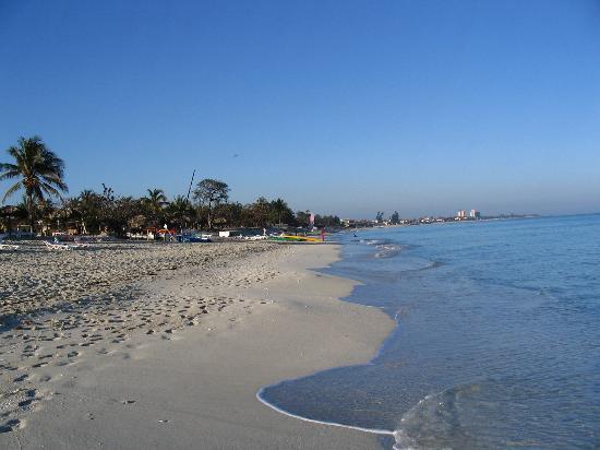 Hotel Roc Barlovento: The beach