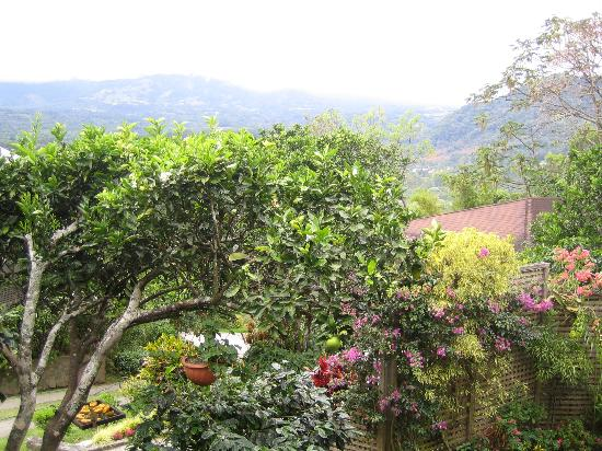 La Montana y el Valle Coffee Estate Inn: view from our deck (on a cloudy day!)