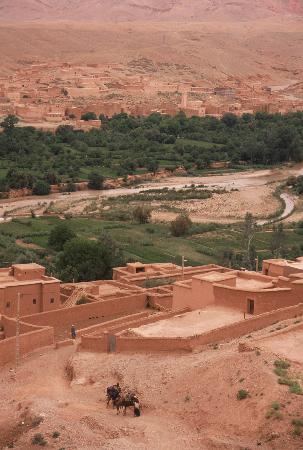 Fès, Marocko: Pre-Saharan Oasis