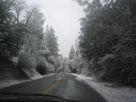 Amador Harvest Inn: An unsual winter in Amador county