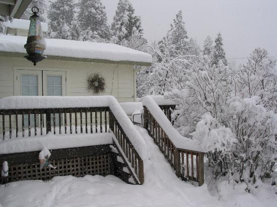 The Barkley Historic Homestead : A Cabin near our cabin