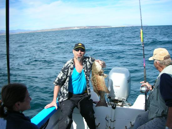 Great fishing right off the coast picture of clementines for Baja california fishing