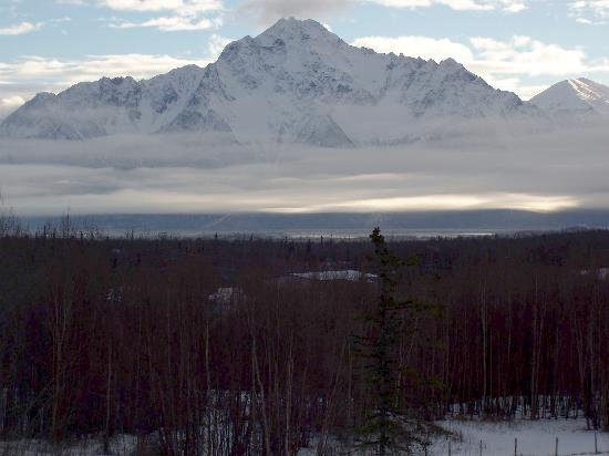 Alaska's Harvest B&B: the amazing view from the living room