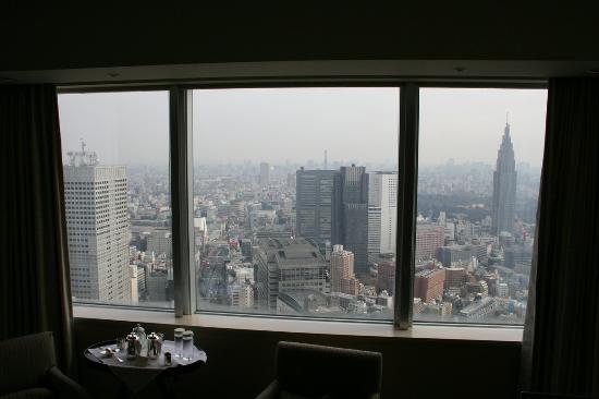 Park Hyatt Tokyo: Daytime View