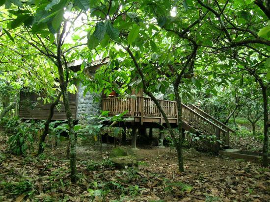 La Ceiba, Honduras: Cabin