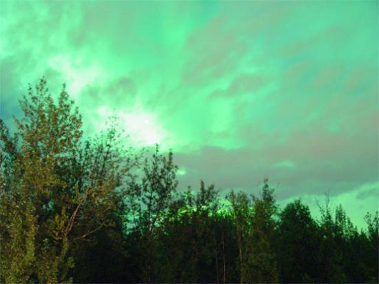 Alaska's Harvest B&B: Northern Lights from driveway of B&B, 9-9-05