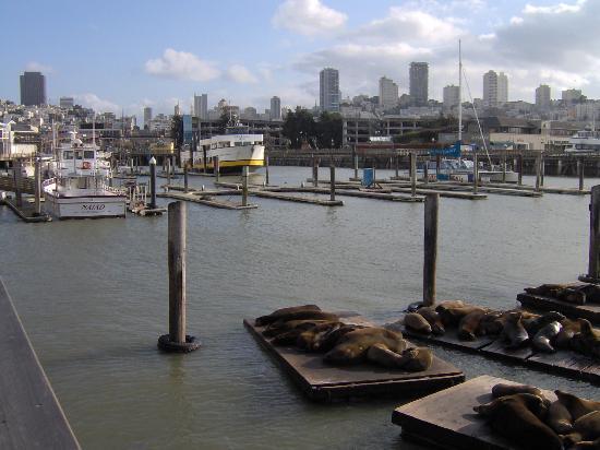 Holiday Inn Express Hotel & Suites San Francisco Fisherman's Wharf: View back towards Fisherman's Wharf