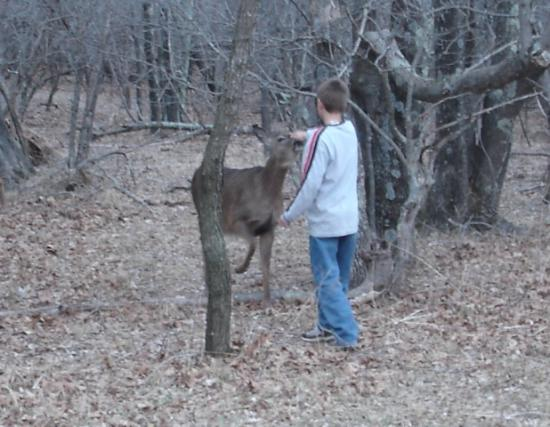 Shadow Mountain Escape: Can you believe the deer came right up to him?