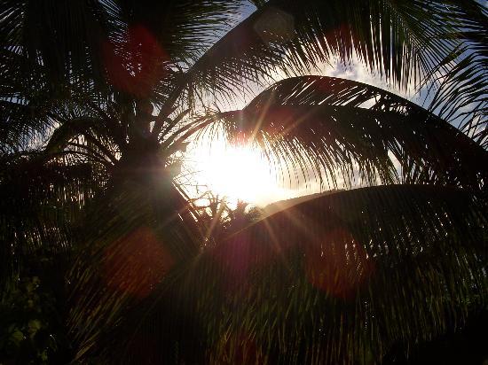 Galley Bay Resort & Spa: Sunrise over the lagoon