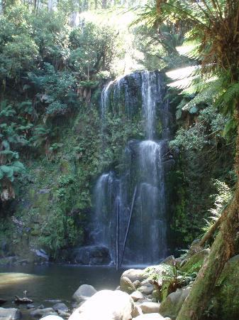 Apollo Bay, Australia: Beauchamp Falls