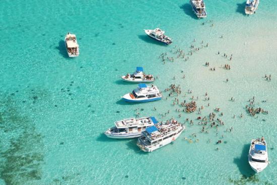Grand Cayman Marriott Beach Resort: Stingray Sandbar