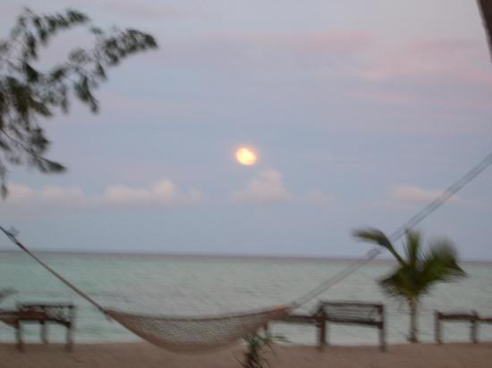 Pongwe Beach Hotel: Moonrise