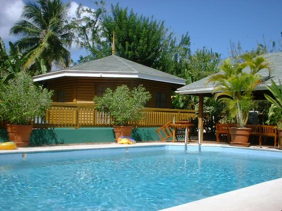 Toucan Inn: pool and poolside room