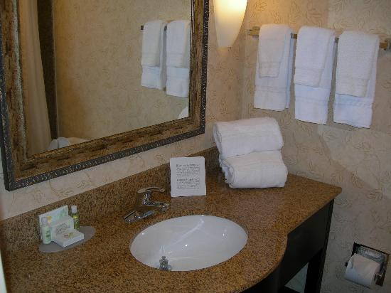 Holiday Inn Hotel & Suites Tallahassee Conference Center North: Nice clean bathroom counter