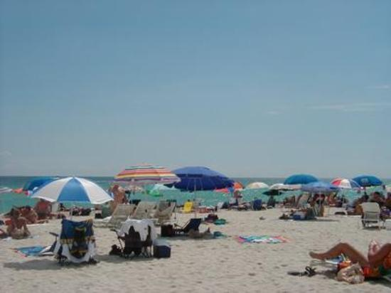 Haulover Beach Park : Busy Day At Haulover