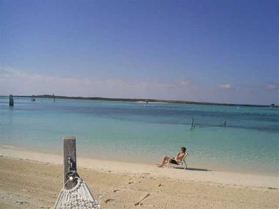 Family beach at Castaway Cay