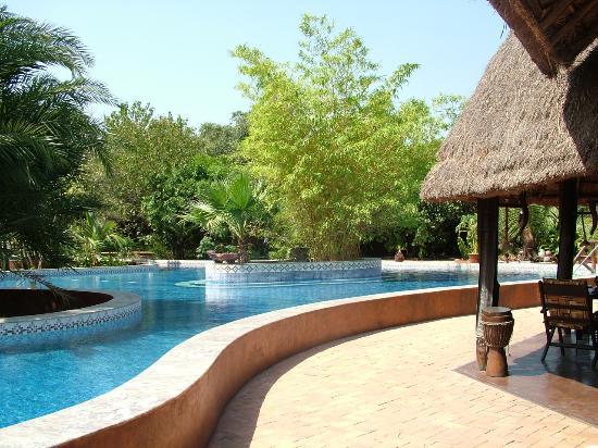 Mandina River Lodge: The pool