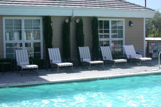 Pool - Picture of Hotel Yountville - Tripadvisor