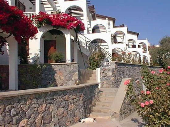 Altinkaya Holiday Resort: apartments