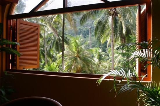 Pacific Club Resort: View from restaurant