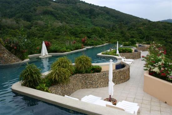 Pacific Club Resort: Roof top pool