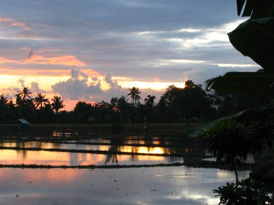 Tegal Sari: Sunset view from patio