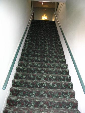 Hotel Lee: The dreaded stairs! We pack too darn much